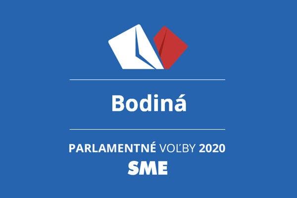 Výsledky volieb 2020 v obci Bodiná