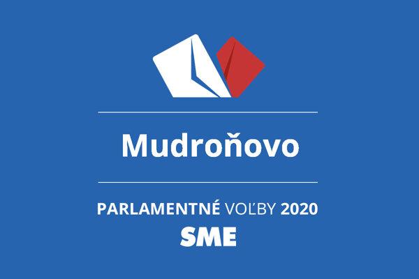 Výsledky volieb 2020 v obci Mudroňovo