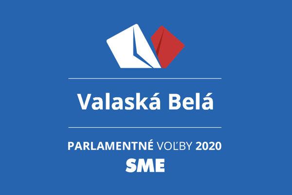 Výsledky volieb 2020 v obci Valaská Belá