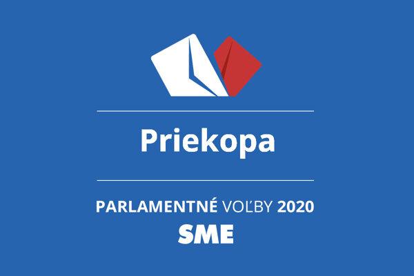 Výsledky volieb 2020 v obci Priekopa