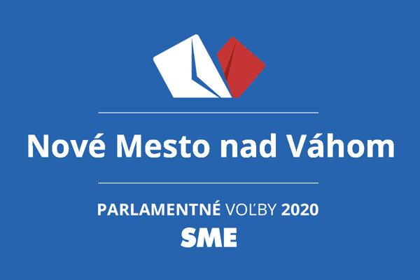 Výsledky volieb 2020 v obci Nové Mesto nad Váhom