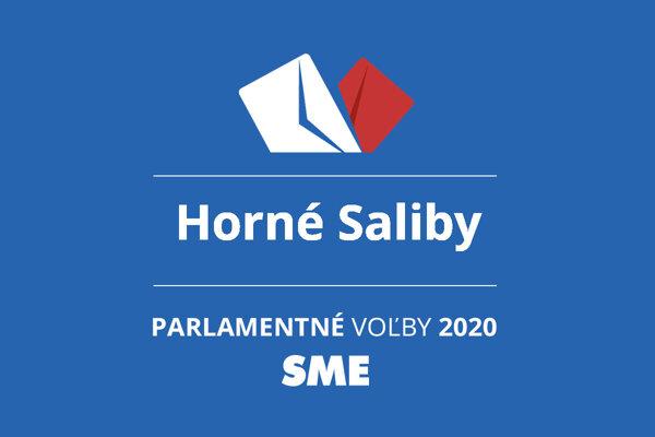 Výsledky volieb 2020 v obci Horné Saliby