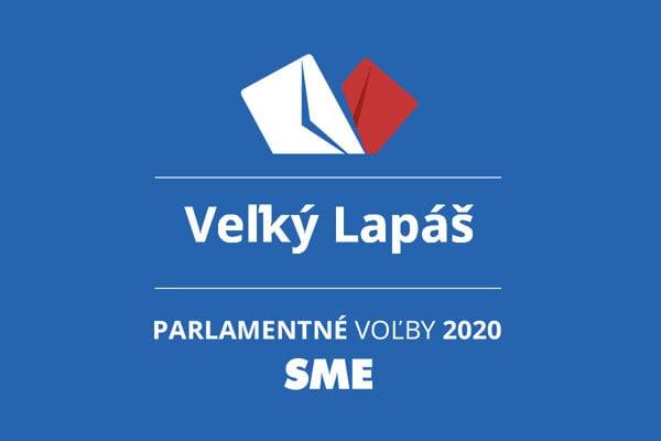 Výsledky volieb 2020 v obci Veľký Lapáš