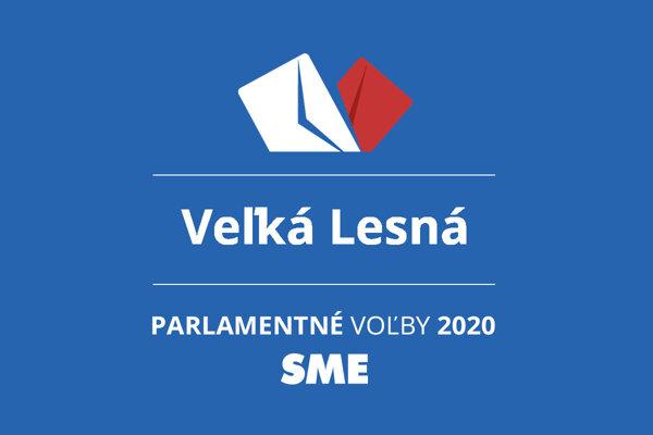 Výsledky volieb 2020 v obci Veľká Lesná