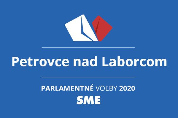 Výsledky volieb 2020 v obci Petrovce nad Laborcom