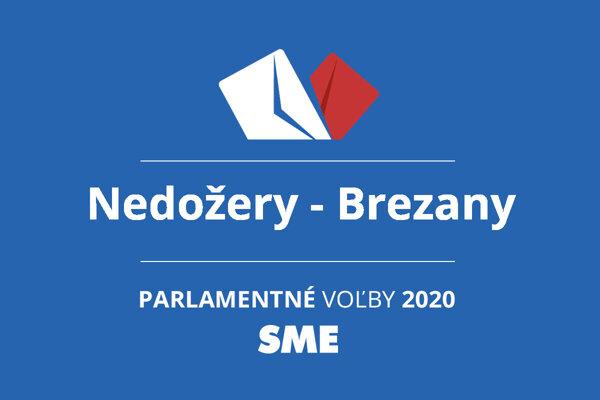 Výsledky volieb 2020 v obci Nedožery - Brezany