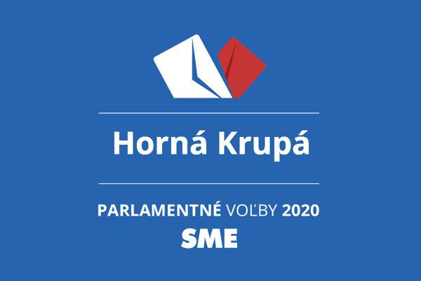 Výsledky volieb 2020 v obci Horná Krupá