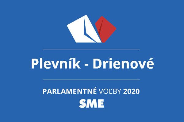 Výsledky volieb 2020 v obci Plevník - Drienové
