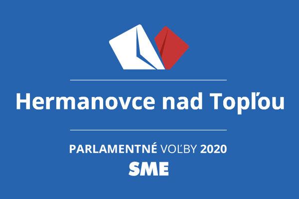 Výsledky volieb 2020 v obci Hermanovce nad Topľou