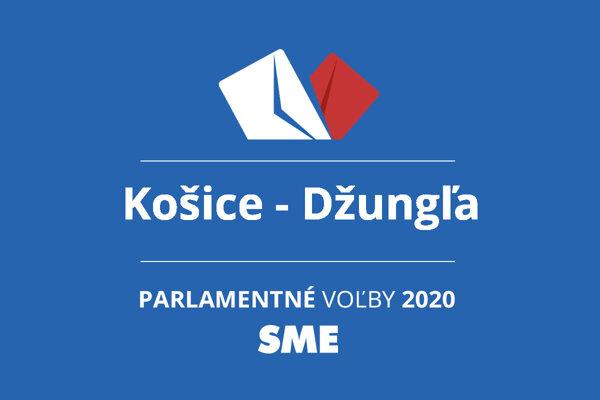 Výsledky volieb 2020 v obci Košice - Džungľa