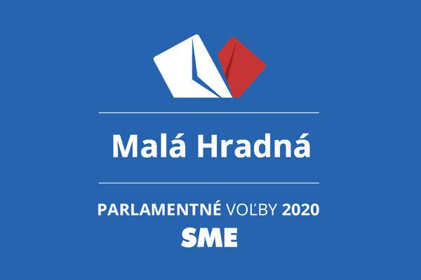 Výsledky volieb 2020 v obci Malá Hradná