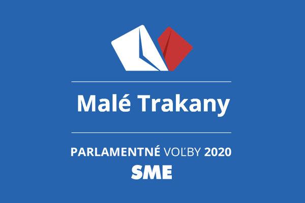 Výsledky volieb 2020 v obci Malé Trakany