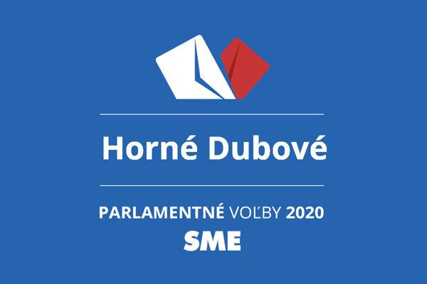 Výsledky volieb 2020 v obci Horné Dubové