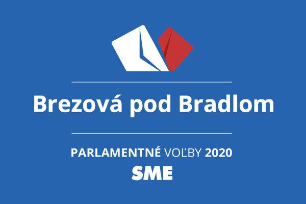 Výsledky volieb 2020 v obci Brezová pod Bradlom