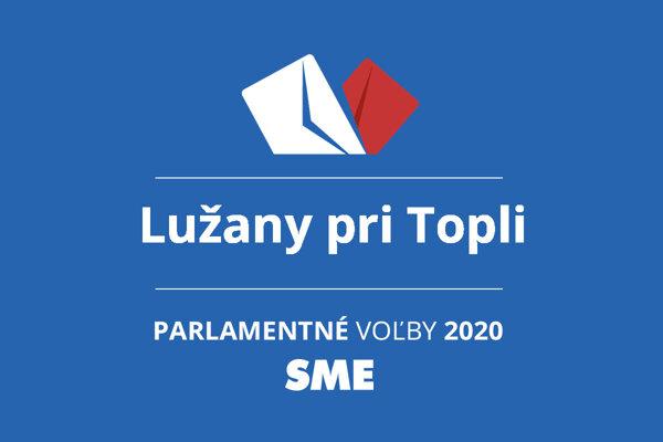 Výsledky volieb 2020 v obci Lužany pri Topli