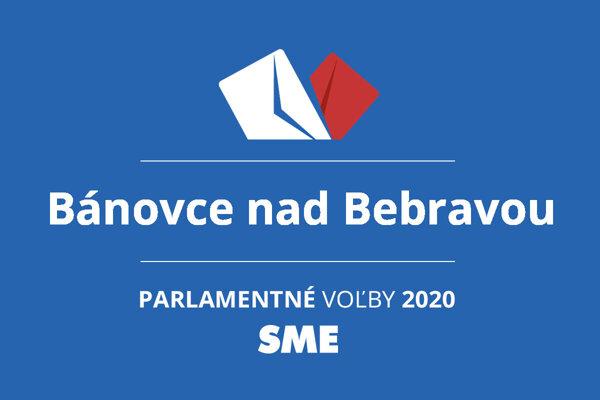 Výsledky volieb 2020 v obci Bánovce nad Bebravou