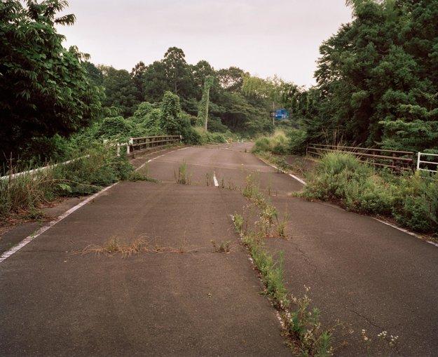 Tráva na ceste v Motooka Shimizu.