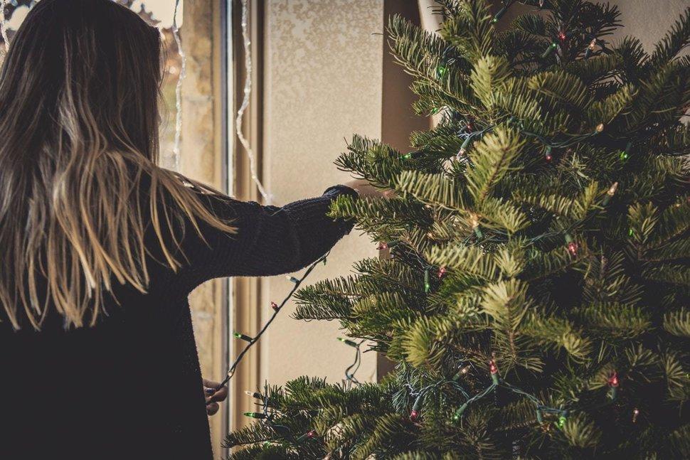 bb47209d7 Aký vianočný stromček si vybrať, aby ste čo najmenej zaťažovali ...