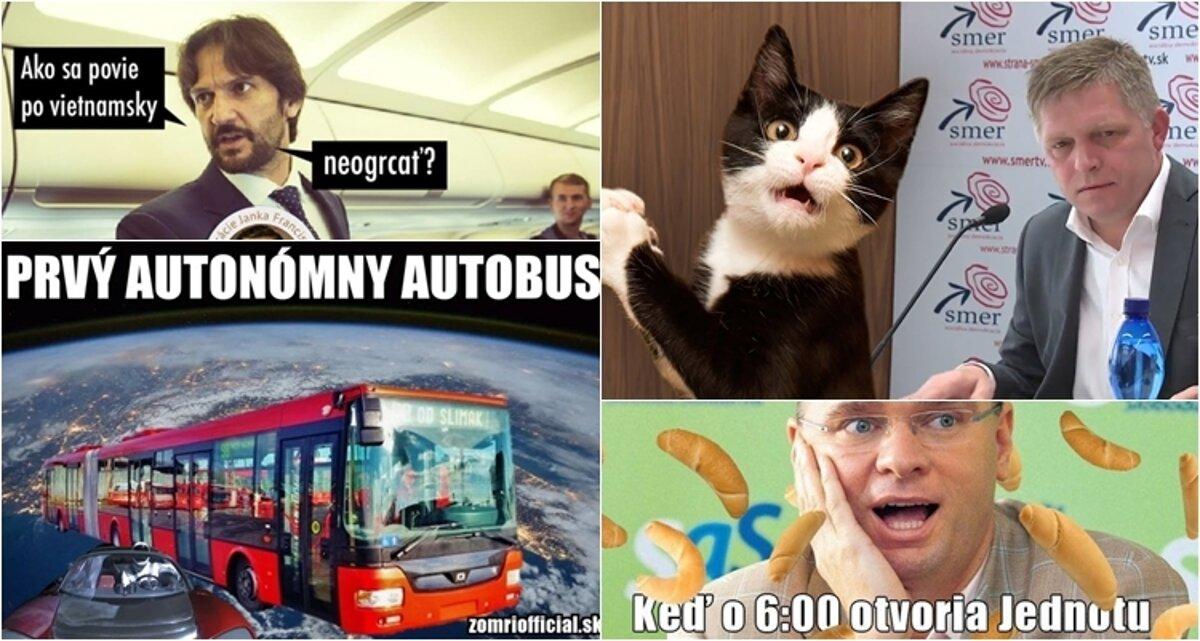 Čo fičalo pred rokom: Ficov vtip o mačke aj únos Vietnamca - fici.sme.sk