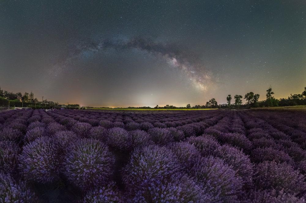 Nočná obloha nad levanduľovým poľom.