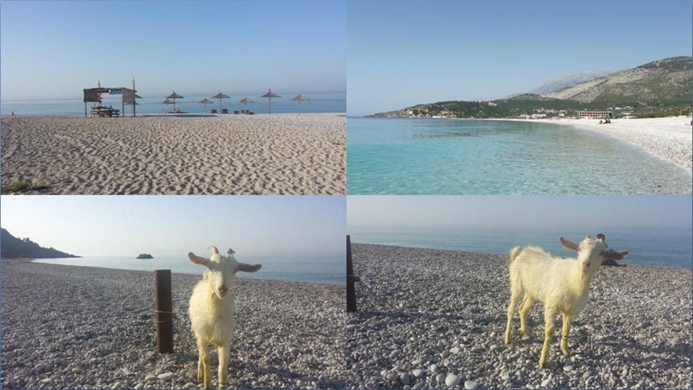 Albánske pláže kúsok od Himare s nečakanou rannou návštevou