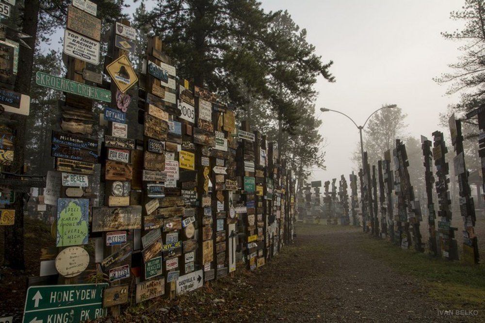 Hmlisté ráno v zajatí značiek v Singpost Forest vo Watson Lake.