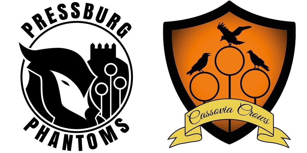 Na Slovensku existujú dva tímy, jeden v Bratislave a jeden v Košiciach. Metlobalu prispôsobili aj svoje logá.