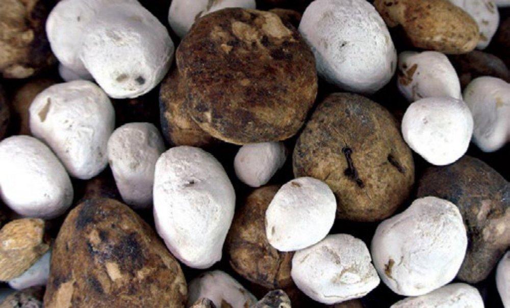 Biele vyprané a čierne zamrznuté zemiaky, naše obľúbené