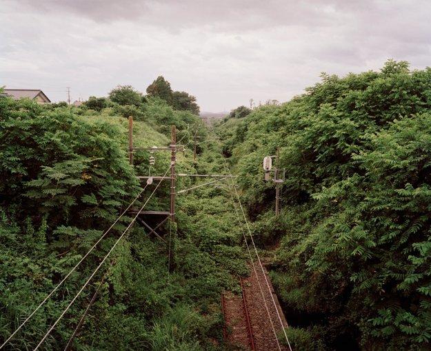 Vegetácia takmer úplne pohltila železničnú stanicu v Yonomori