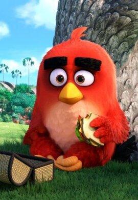 Angry Birds vo filme 3D