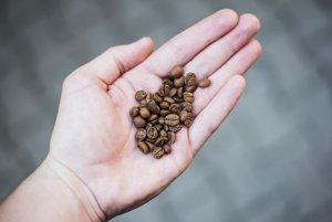 Svet karamelovej vône - čerstvo pražená káva z Caffe4U