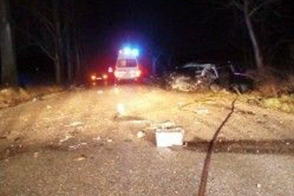 Vodič po prevoze do nemocnice zraneniam podľahol.