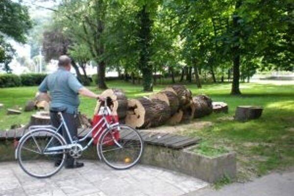 Stromy v parku vyrúbali vo vegetačnom období