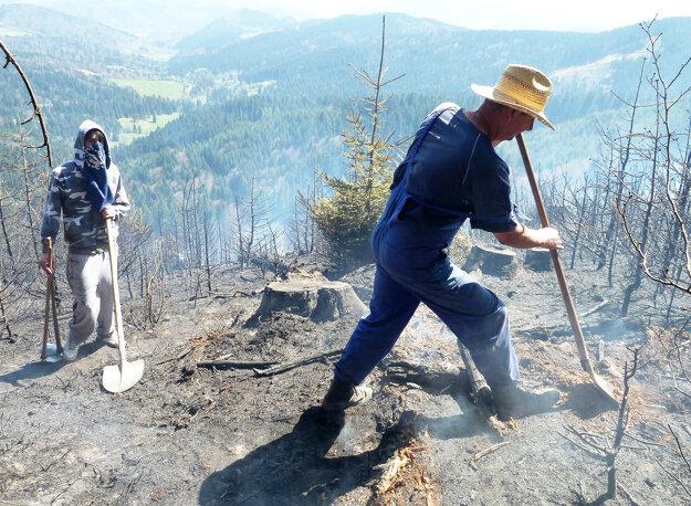 Hasenie lesa je náročné pre techniku aj ľudí.