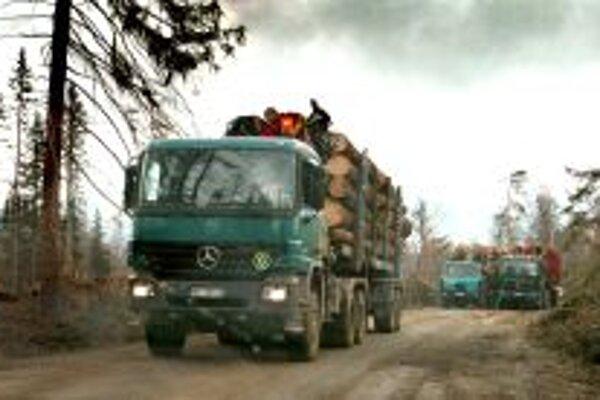 Od 3. marca nadobudlo účinnosť nariadenie, podľa ktorého  je zakázané umiestniť nelegálne drevo alebo výrobok z neho  na vnútorný trh EÚ.