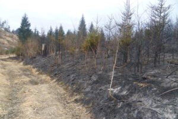 Vypaľovanie tráv je na Kysuciach tradíciou. Ledva zíde sneh a s požiarmi akoby sa vrece roztrhlo.