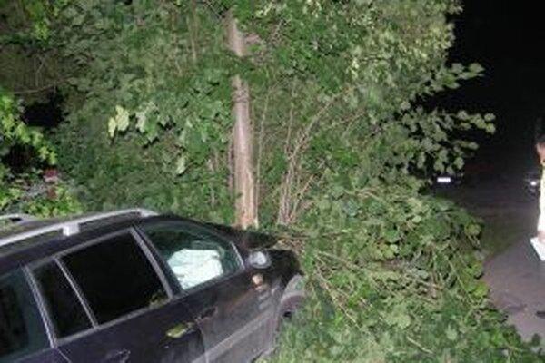 Mladý vodič narazil s vozidlom do stromu.