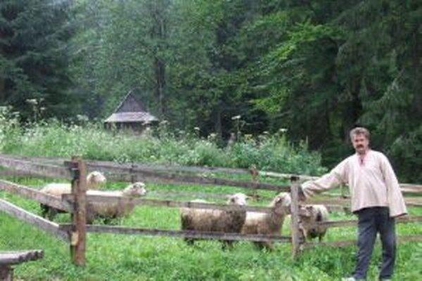 Návštevníci kysuckého skanzenu si budú môcť pozrieť strihanie oviec.