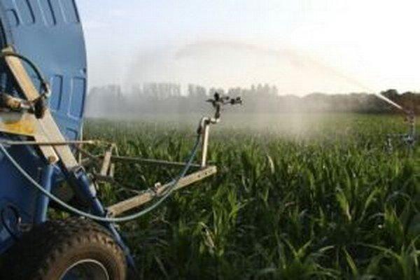 Na zavlažovacie systémy kysuckí poľnohospodári nemajú peniaze. Spoliehajú sa na to, že dostatočne naprší.