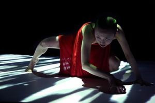 Záber z francúzsko-japonského predstavenia Loss-Layers, s ktorým sa súbor A.lter S.essio predstaví v rámci festivalu zajtra v elledanse.