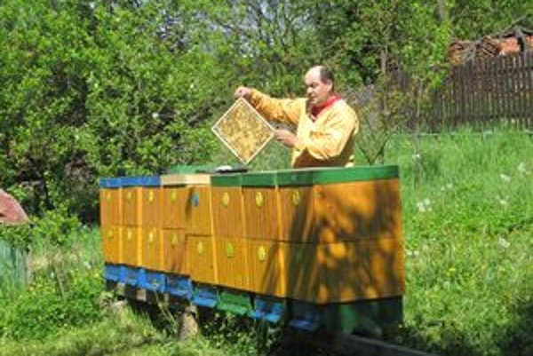 Včielky treba každý deň skontrolovať ako sa majú, či je v úli všetko v poriadku.