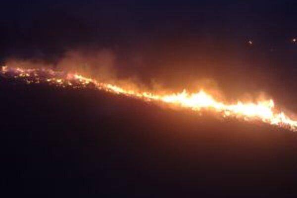 Lesné požiare často spôsobujú veľké ekologické škody.