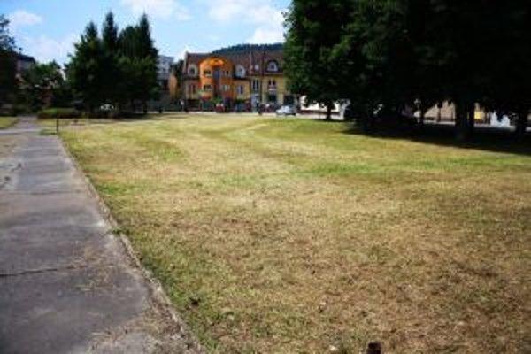 Súkromnú parcelu vyčistil Mestský podnik služieb. Náklady vyfakturujú majiteľovi.