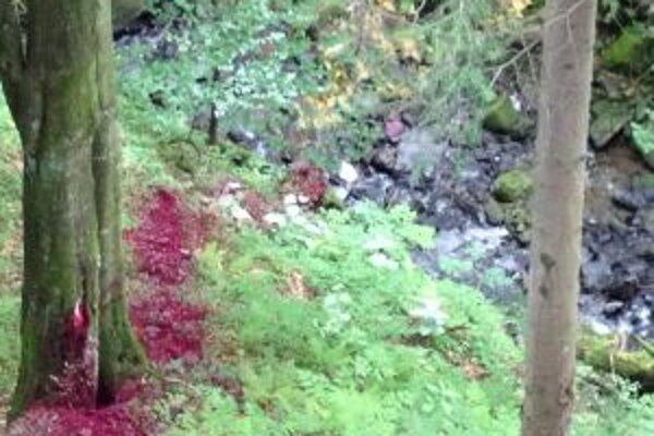 V lese sa objavila neznáma fialová látka, lesníci chcú urobiť jej rozbor.