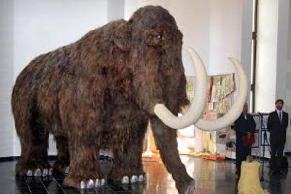 V prírodovednej expozícii vystavili samicu mamuta.