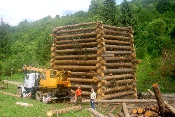 Drevená pyramída merala viac ako 17 metrov.