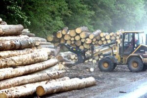 Práce v lese po povodniach v regióne pokračujú.