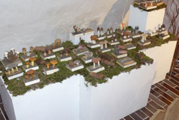 Na výstave môžete obdivovať  stosedemdesiat verných modelov húb.