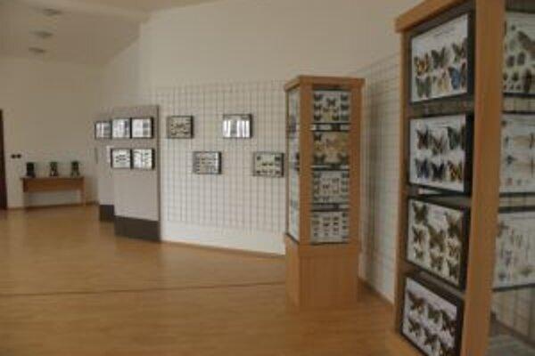 Návštevníci si môžu na výstave pozrieť aj všakovaké druhy hmyzu.