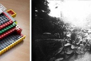 Minulý rok prispel za Slovensko k podujatiu Worldwide Photography Pinhole Day napríklad aj Tamás Csambal s rastlinným zátiším vytvoreným na fotopapier s vlastnoručne vyrobenou dierkovkou z lega.